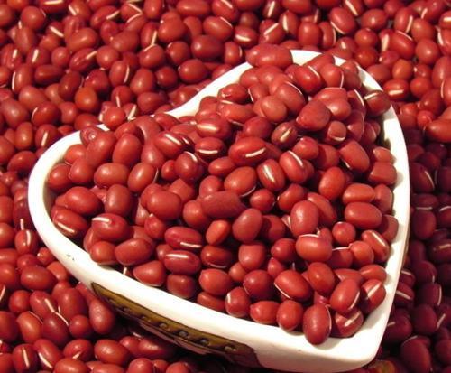 红豆的功效与作用,食用方法及禁忌